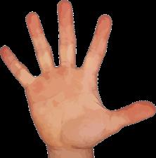 Cada dedo tiene una misión