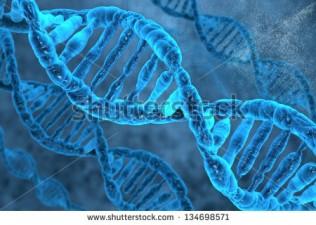 ADN y los maestros espirituales