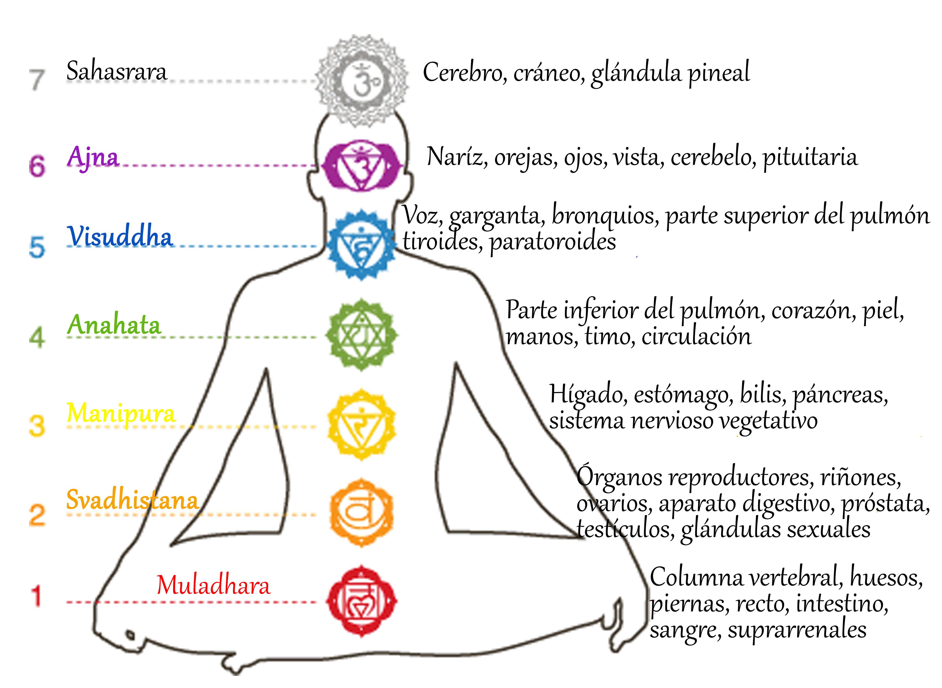 Excepcional Chakras y Cristales Significado Colores Usos Joyas Bijouterie  DB07