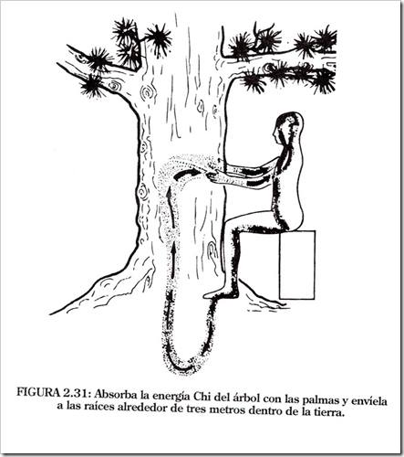 energíachi-árboles.jpg