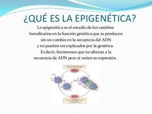 Epigenética, MECANISMO