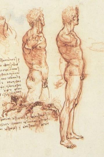 estudio-anatomico.jpg