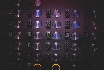 Números y regeneración de órganos Bases Teoría Historia