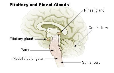 Meditación para abrir sexto chacra y el tercer ojo