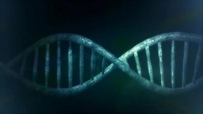 La red inteligente El ADN La Internet Biológica Hipercomunicación Internet Celular