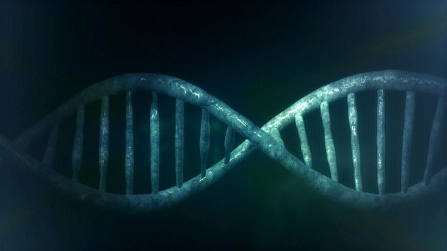 ADN-net-biológica.jpg