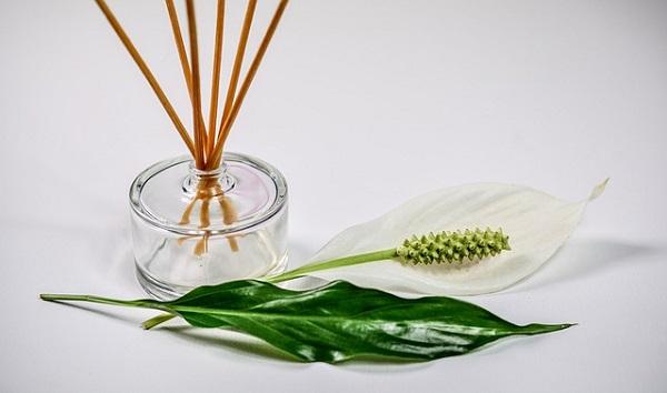Aceites esenciales : aromaterapia