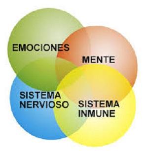 psiconeuroinmunologia1.jpg