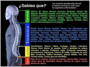 Efectos de vértebras desalineadas Síntomas y Causas emocionales Podemos corregirlo!!
