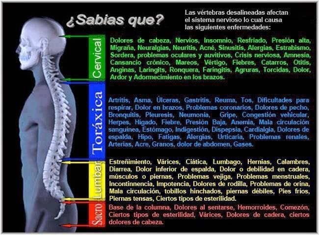 Efectos-de-vértebras-desalineadas.jpg