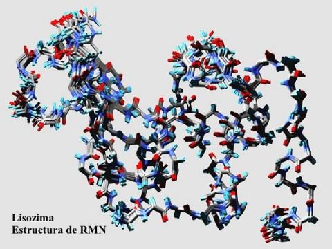 proteinas-vibracion.jpg