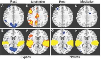 Los antiguos ya lo sabían La Meditación Y Su Importancia