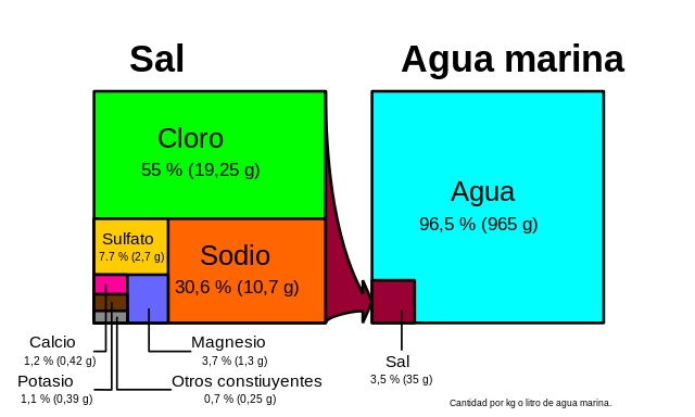 sal-marina.png