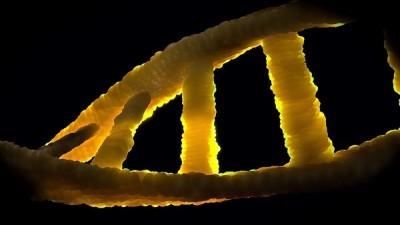 ADN ni basura ni terrestre