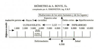 Biómetro de Bovis