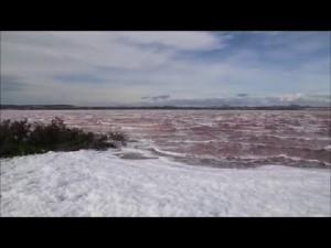 Beneficios de consumir sal de mar