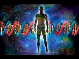 Efectos del cambio vibracional
