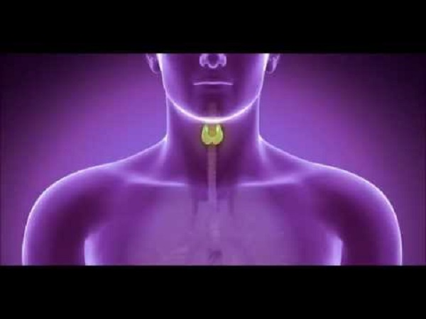 toxinas-y-tiroides.jpg