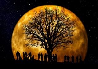 No solo una romántica luna