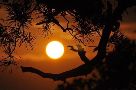 nuestro-amigo-el-sol.jpg