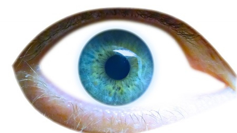 Receta para sanar la vista