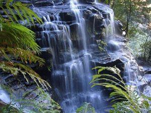 El agua y su capacidad de almacenar información