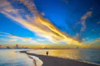 Vida según la metafísica ¿Qué es? Comprendiendo el significado de la vida Todo lo que nos rodea es vida
