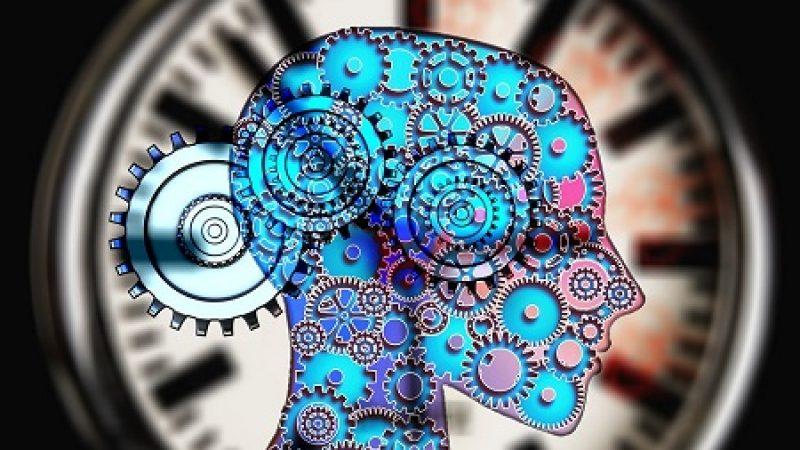 Wi Fi orgánica en el cerebro humano ¿Consciencia de manada como las especies animales? Nuevo descubrimiento